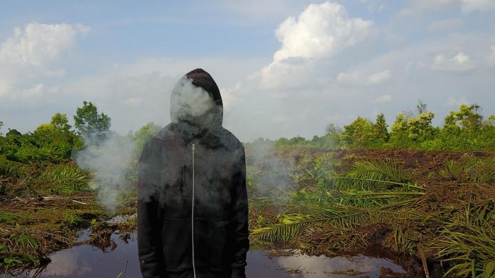 Trabalho de Mark Jenkins em Riau (Crédito: Divulgação)