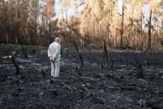 Obra de Isac Cordal sobre os incêndios florestais em Portugal. (Crédito: Isac Cordal)